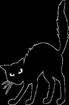 catblack cat halloween diademuertos hallowen stickersfreetoedit freetoedit