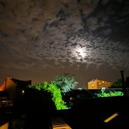 freetoedit nightshot