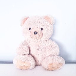 freetoedit bear plush plushbear cuddlybear