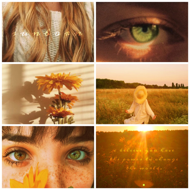 🌱🌻🌞 sunborn aesthetic 🌞🌻🌱 #moodboard #aestheticboard #yellowaesthetic #sun #sunshine #sunaesthetic #greeneyes #flowers #nature #ethereal #sunny #warmcolors #sunlight