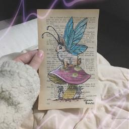 coelho rabbit draw desenho drawing
