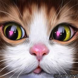 freetoedit cat catslover surrealart surrealism