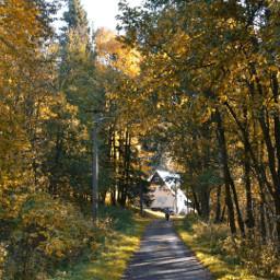 freetoedit october autumn madewithpicsart
