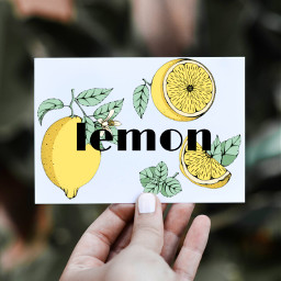 freetoedit lemon ircblanksheet blanksheet