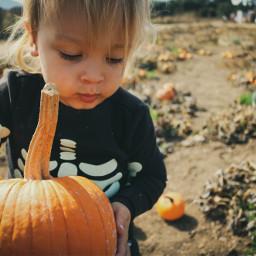 rossandrew pumpkin halloween halloween2019 portrait pcportraiture Portrait