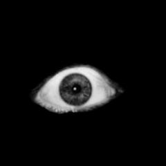 eye horror horroreye eyes black freetoedit