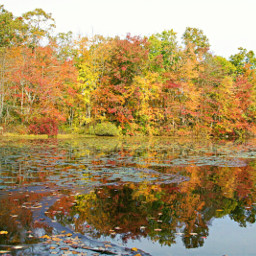freetoedit naturephotography lake reflections autmnvibes