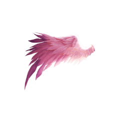wings wing fairy pink costume freetoedit