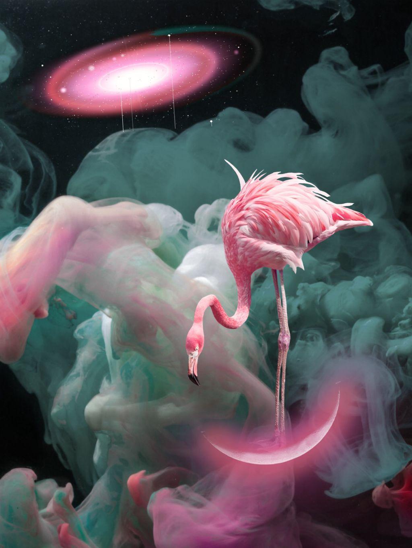 #freetoedit #stickers #smoke #ink #colourful #pink #galaxy #surreal #fantasy #imagination #flamingo