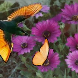 nature natural realistic real bird freetoedit