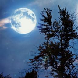 photography moon spooky halloween freetoedit