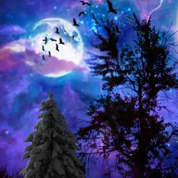 galaxy stars sky mon halloween tree spooky vipaziz