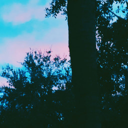 silhouette nature sky travel interesting freetoedit