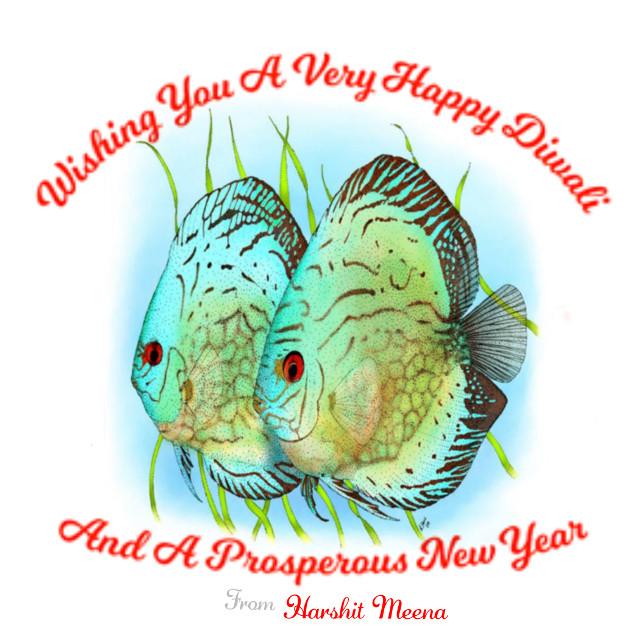 Happy Diwali and new year everyone   #happydiwali #discusdiwali #happydiwalidiscus #discusfishdrawing #diwalidiscus #happynewyeardiscus #newyeardiscus #discusfish #happydiwalifish #happydiwaliaquarium #newyearaquarium #diwalibackgrounddiscus #diwaligreetings  #freetoedit #remixme #remixedit