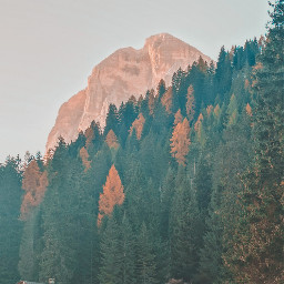 mountains sunset dolomites autumn pines