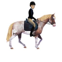 sso starstable horse riding blackoutfit freetoedit
