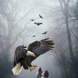 madewithpicsart imagination fog bats eagle scared freetoedit