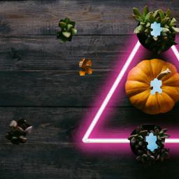 freetoedit puzzle ircpumpkin pumpkin