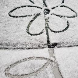 freetoedit snow doodle fun cold