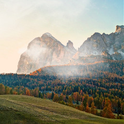 mountains clouds pines forest dolomites