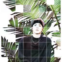myedit bamboo art freetoedit
