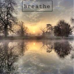 freetoedit foggy hazy trees reflection