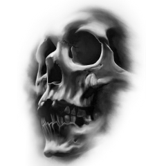freetoedit skull skulls halloween scskulls