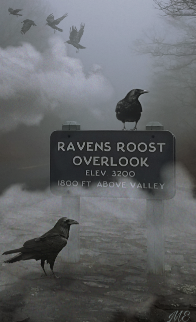 A simple #raven edit to @mattermen  awesome photo!! 💙💫☺️ Happy Friday!! #roost #ravensroost #freetoedit