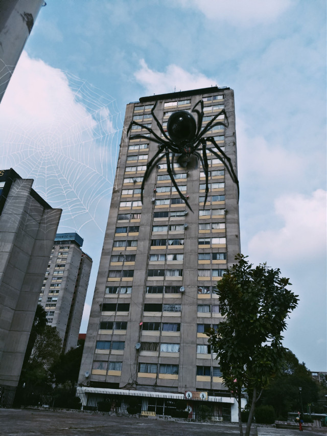 #spider #city #urban #photography #abstract