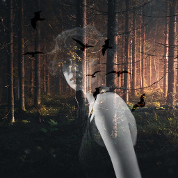 freetoedit girl ghost birds forest
