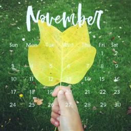 november2019 autumnleaves orange aestheticphotography srcnovembercalendar novembercalendar
