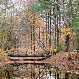 freetoedit naturephotography pond reflection bridge walkingtime