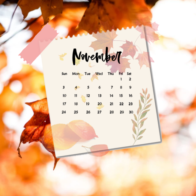 #freetoedit #november #fall