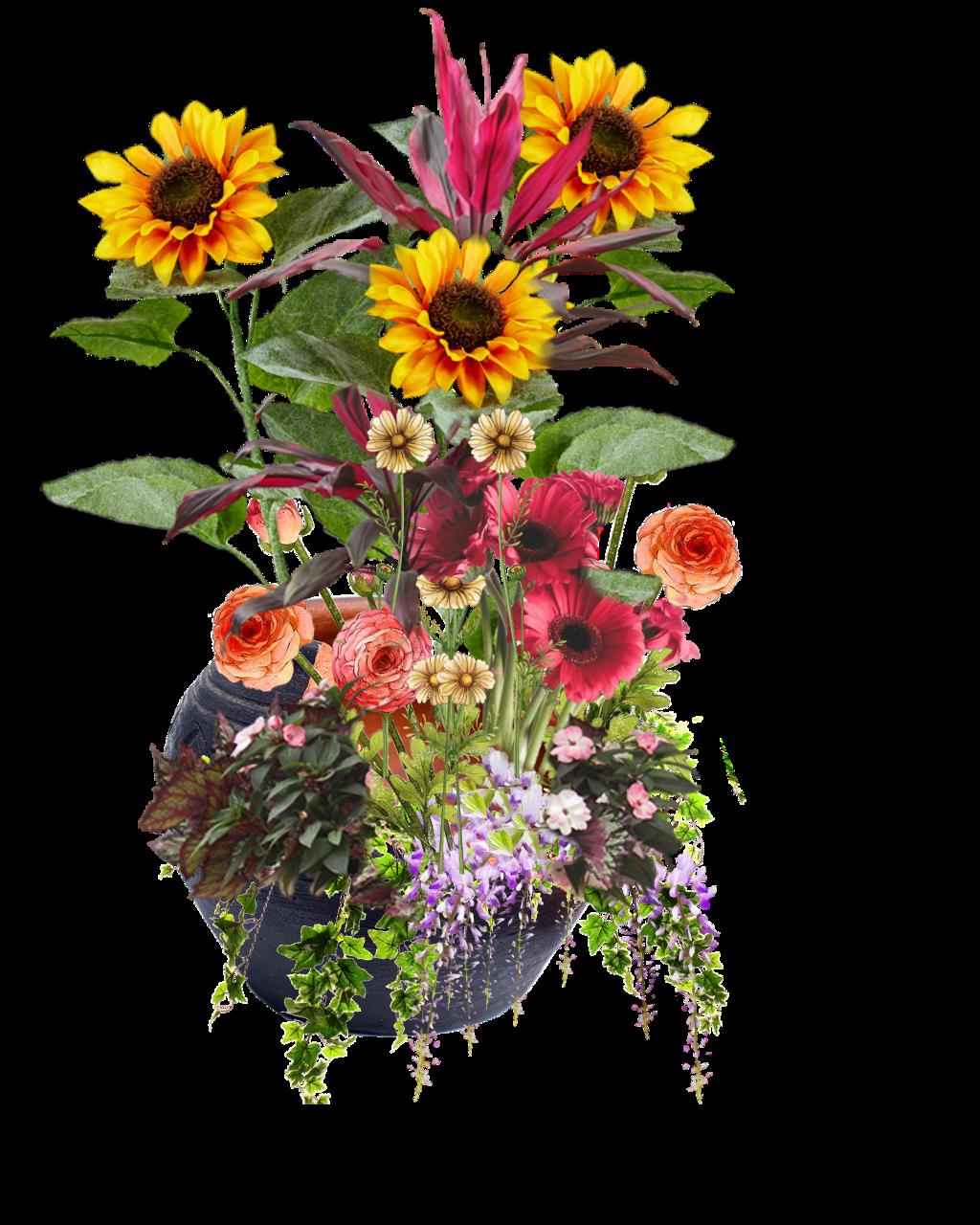 #freetoedit #flowers #pot