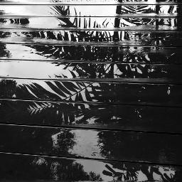 myphotography barbados rainyday deck wet