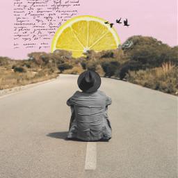 freetoedit sunrise sky bird lemon
