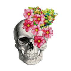 freetoedit skull flowers