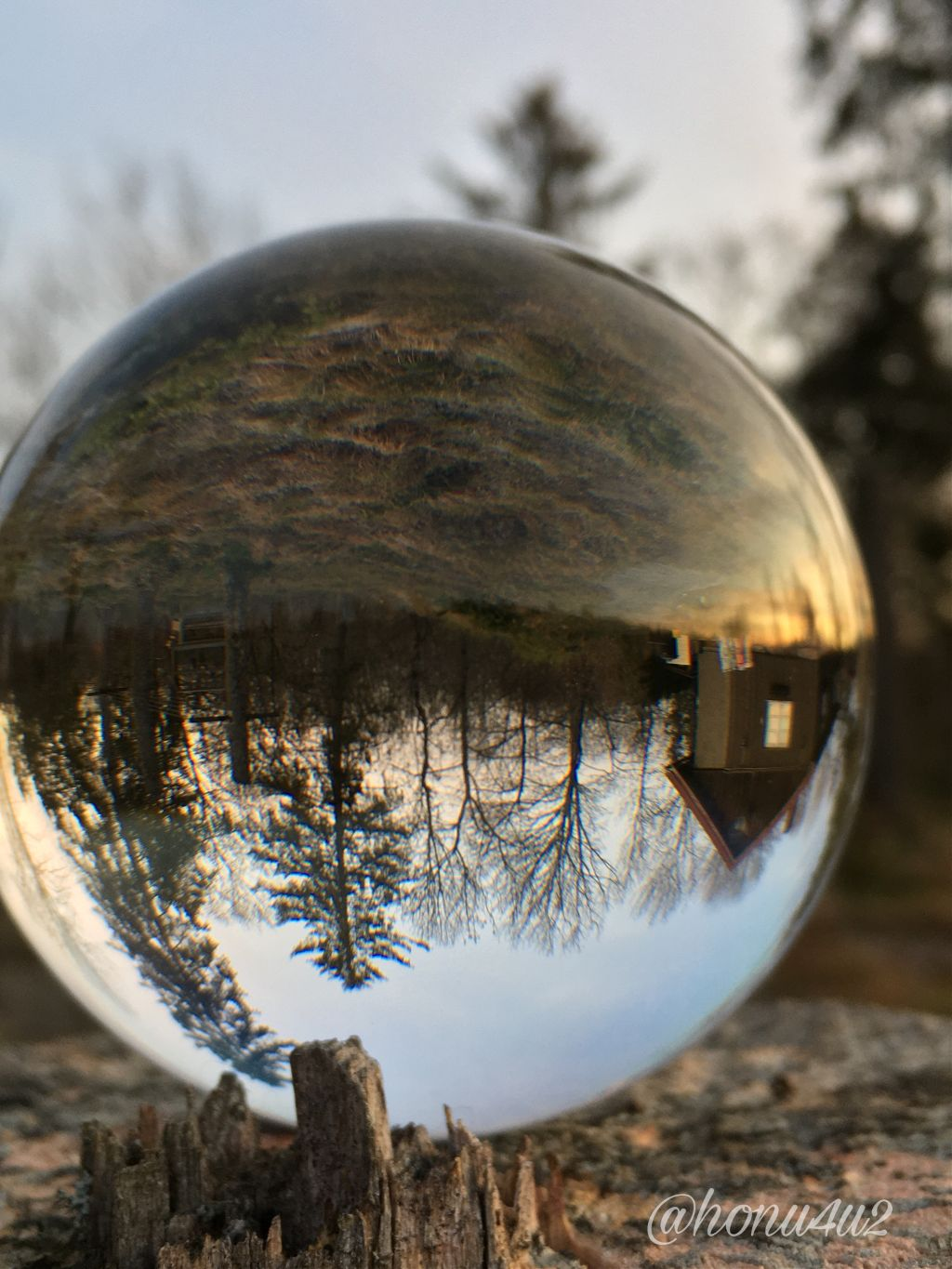 #magicball #october #cold #crisp #morning #sunrise #myplace #trees#upsidedown