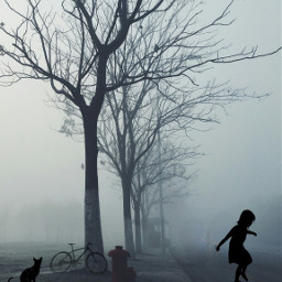 freetoedit outdoors fog foggy myedit