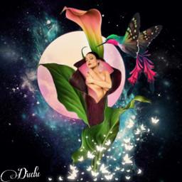 freetoedit tumblr flores colibri magic
