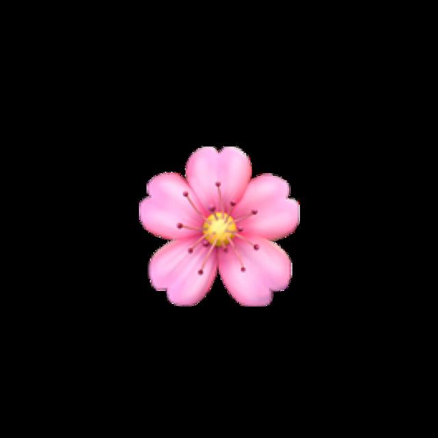 #flor #rosa #flowers #emoji #pink #followme #follower #follow #freetoedit