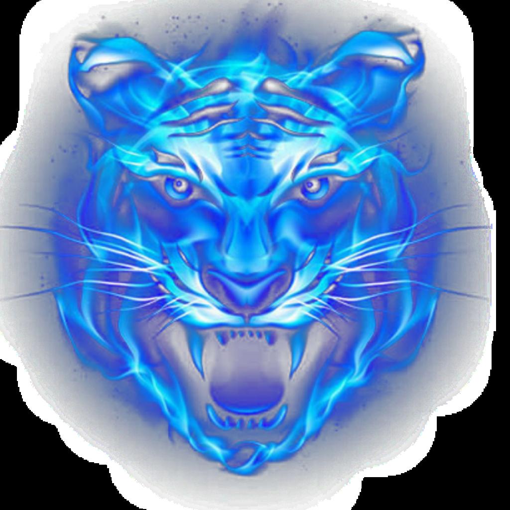 #freetoedit #fire #fuego #tigre #tiger #sombra #mirosmar