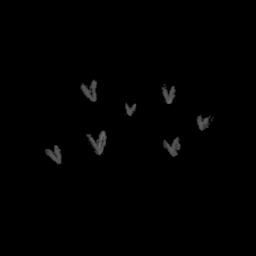 heart black freetoedit