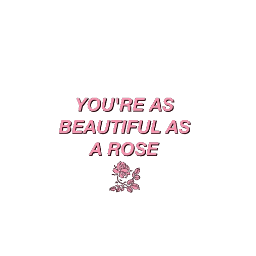 aesthetic quotes rose pinkaesthetic pink freetoedit