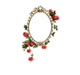 vintage frame mirror flowers aesthetic freetoedit