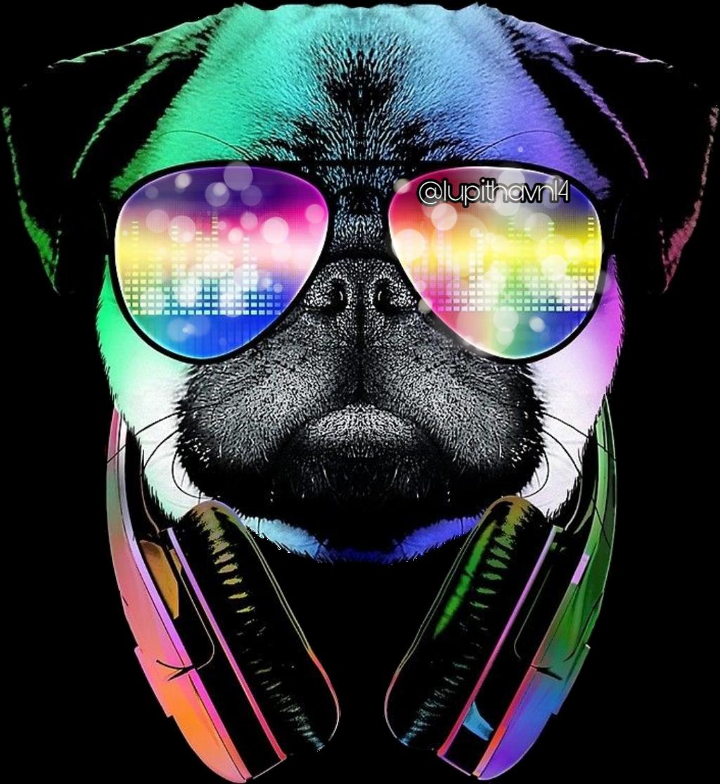 https://picsart.com/i/310865361057211?challenge_id=5dc402a0bc1ba93a12254df3  #pug #dog #audifonos #colors #rainbow #cachorro #stickerspopulares #stickersedit #stickersfreetoedit #stickerstumblrs #stickers_everywhere #stickersgeniales #stickerstime #stickersremixed #stickerschallenge #stickerstar #sticker1 #stickers2 #sticker3 #stickers4u #sticker #scumbrella #scbokeh #bokeh
