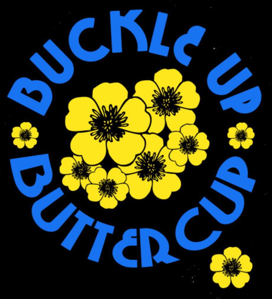 #buckleup#pin #freetoedit