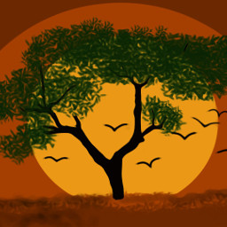 freetoedit sunrise_sunsets_aroundworld sillouette dcalonelytree alonelytree