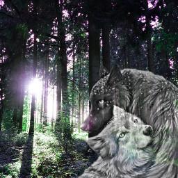 woolf wolf wood freetoedit