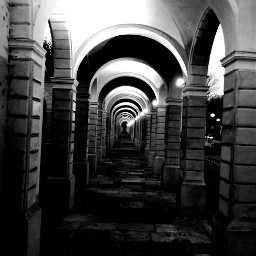 freetoedit effect bwphoto blackandwhite streetstyle